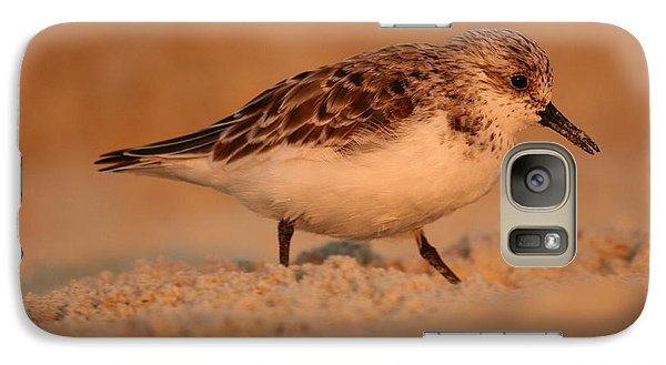 Galaxy Case featuring the photograph Sanderling Sunrise by John F Tsumas