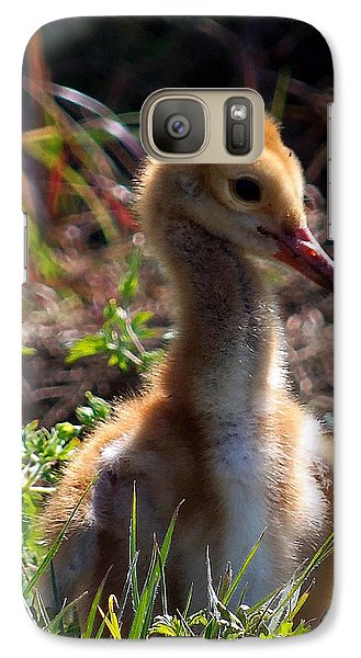 Galaxy Case featuring the photograph Sandhill Chick 009 by Chris Mercer
