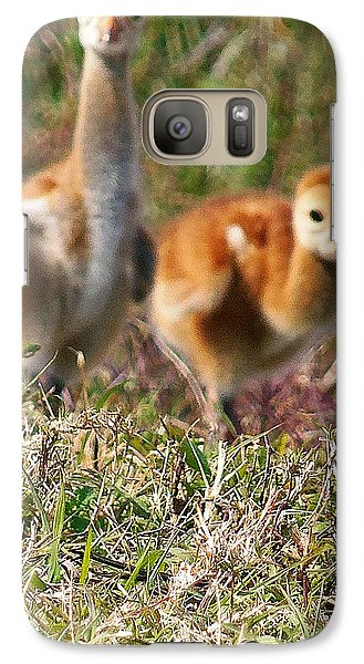 Galaxy Case featuring the photograph Sandhill Chicks by Chris Mercer