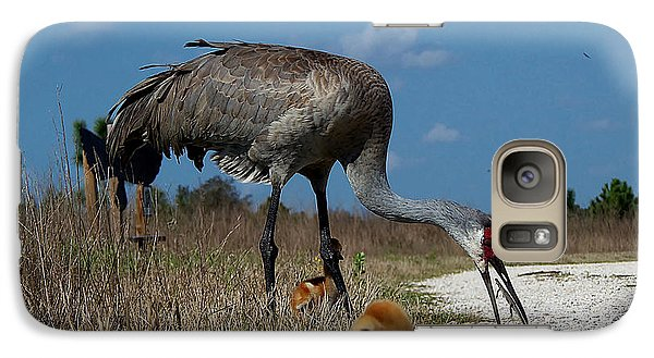 Galaxy Case featuring the photograph Sandhill Crane 038 by Chris Mercer