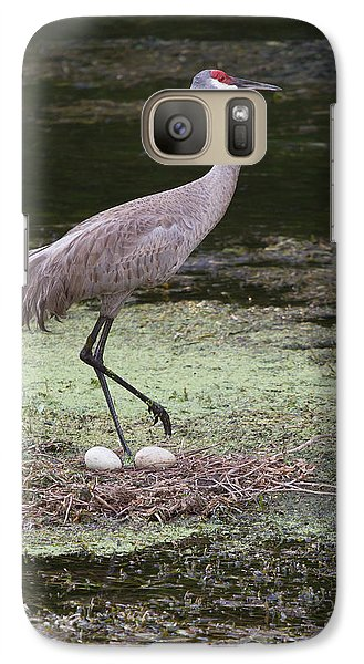 Galaxy Case featuring the photograph Sandhill Crane And Eggs by Paul Rebmann