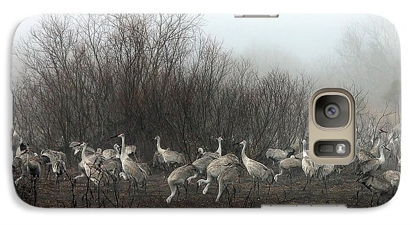 Galaxy Case featuring the photograph Sandhill Cranes In The Fog by Farol Tomson