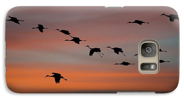 Galaxy Case featuring the photograph Sandhill Cranes Landing At Sunset by Avian Resources