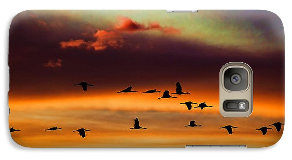 Galaxy Case featuring the photograph Sandhill Cranes Take The Sunset Flight by Bill Kesler