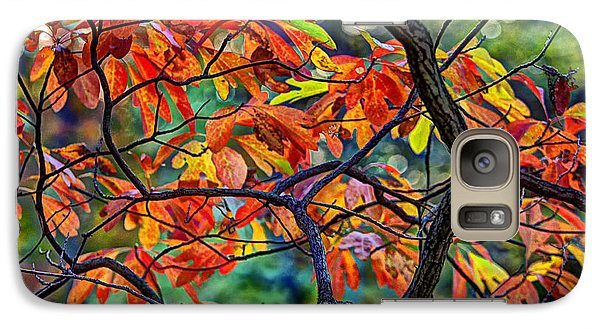 Galaxy Case featuring the photograph Sassafras Leaves by Skip Tribby