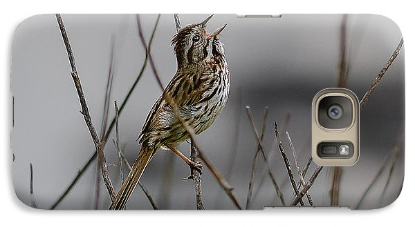 Galaxy Case featuring the photograph Savannah Sparrow by Marty Saccone
