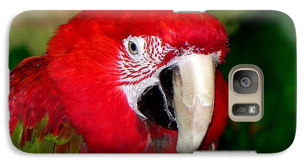 Galaxy Case featuring the photograph Scarlet Macaw by Bill Swartwout