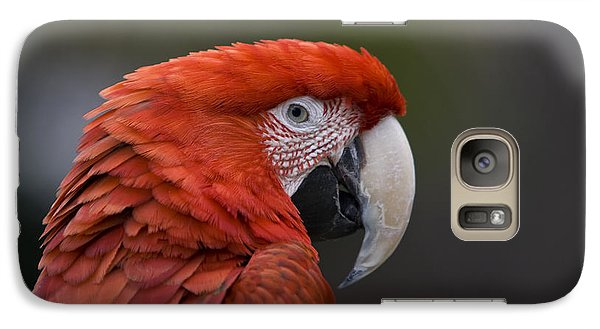 Galaxy Case featuring the photograph Scarlet Macaw by David Millenheft
