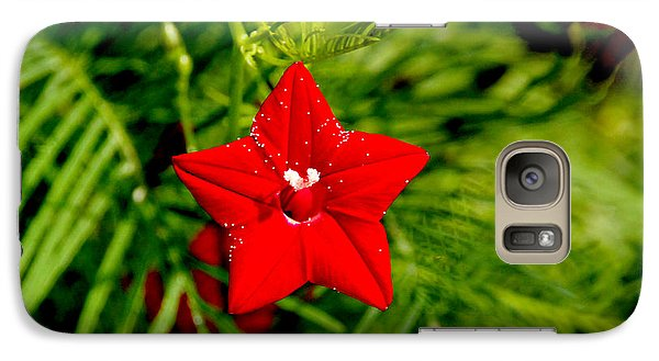 Galaxy Case featuring the photograph Scarlet Morning Glory - Horizontal by Ramabhadran Thirupattur