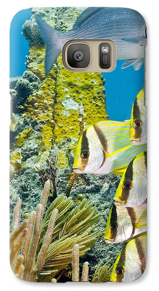 Galaxy Case featuring the photograph School Gathering by Paula Porterfield-Izzo