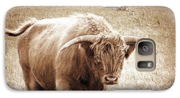 Scottish Highlander Bull Galaxy S7 Case