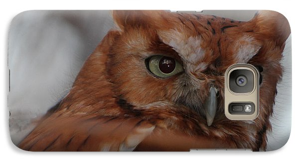 Galaxy Case featuring the photograph Screech Owl by Constantine Gregory