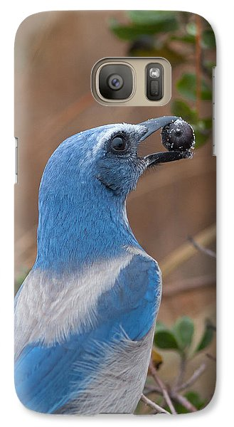 Galaxy Case featuring the photograph Scrub Jay With Acorn by Paul Rebmann
