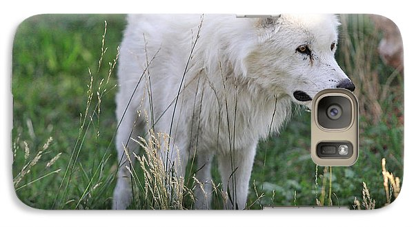 Galaxy Case featuring the photograph Scruffy White Wolf by Kate Purdy