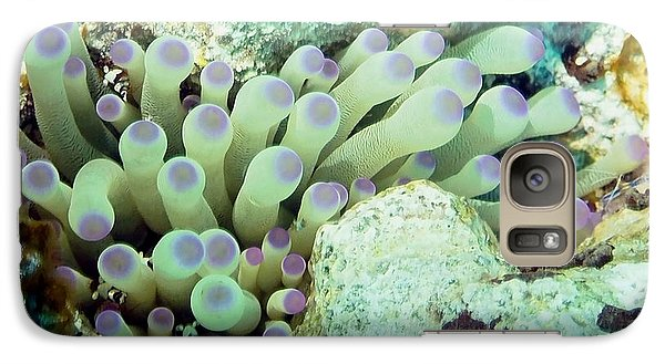 Galaxy Case featuring the photograph Sea Anemone With Squat Anemone Shrimp Family by Amy McDaniel