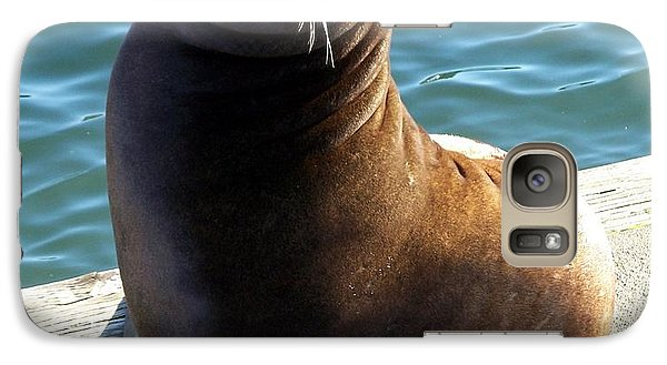 Galaxy Case featuring the photograph Sea Lion Basking In The Sun by Chalet Roome-Rigdon