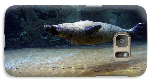 Galaxy Case featuring the photograph Sea Lion Swimming Upsidedown by Verana Stark
