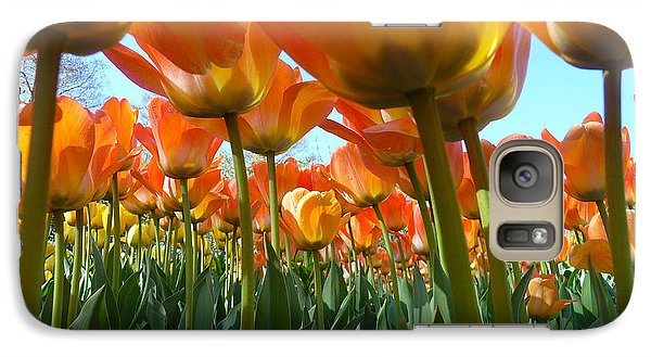Galaxy Case featuring the photograph Sea Of Orange by Dan Myers