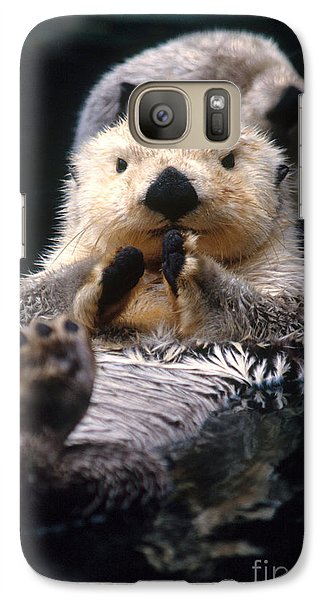 Sea Otter Pup Galaxy Case by Mark Newman
