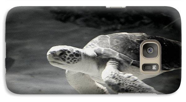Galaxy Case featuring the photograph Sea Turtle by Amanda Eberly-Kudamik