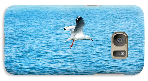 Galaxy Case featuring the photograph Seagull At St Kilda by Yew Kwang