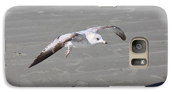 Galaxy Case featuring the pyrography Seagull by Chris Thomas