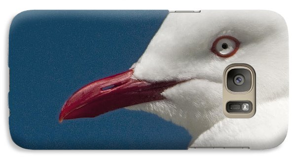 Galaxy Case featuring the photograph Seagull by Dennis Cox WorldViews