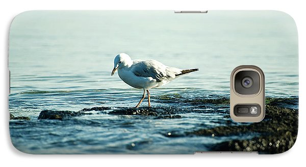 Galaxy Case featuring the photograph Seagull Hunting by Yew Kwang