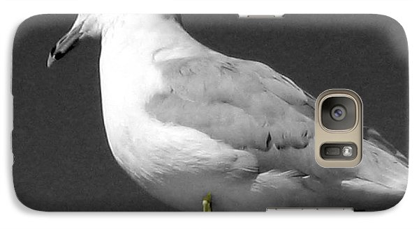Galaxy Case featuring the photograph Seagull In Black And White by Nina Silver