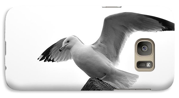 Galaxy Case featuring the photograph Seagull In Black And White by Todd Soderstrom