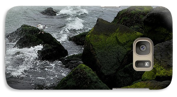 Galaxy Case featuring the photograph Seagull On Stone 001 by Dorin Adrian Berbier