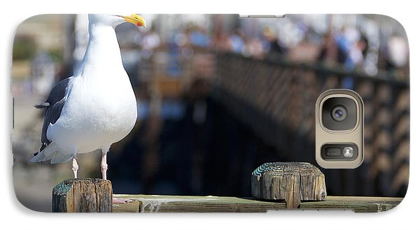 Galaxy Case featuring the photograph Seagull by Robert  Aycock
