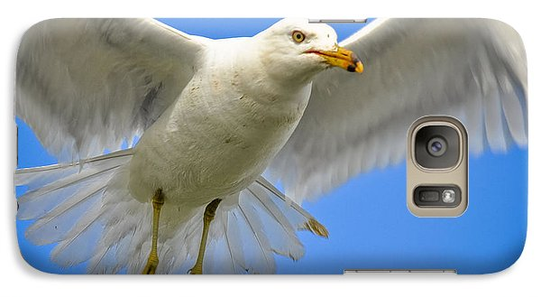 Galaxy Case featuring the photograph Seagull Wings by Gina Savage