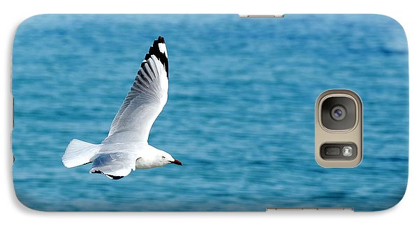 Galaxy Case featuring the photograph Seagull by Yew Kwang