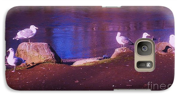 Galaxy Case featuring the photograph Seagulls On The Willamette River by Suzanne McKay