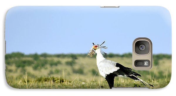 Galaxy Case featuring the photograph Secretary Bird Gathering  by AnneKarin Glass