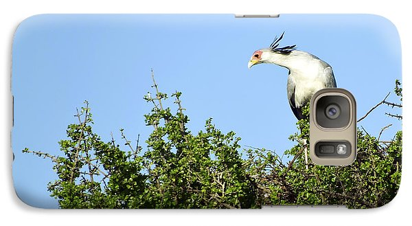 Galaxy Case featuring the photograph Secretary Bird Stretch by AnneKarin Glass