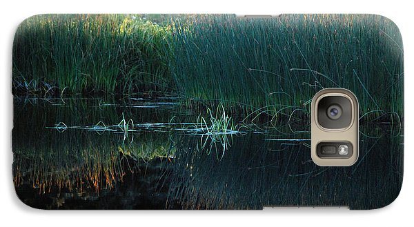 Galaxy Case featuring the photograph Sedges At Sunset by Cynthia Lagoudakis