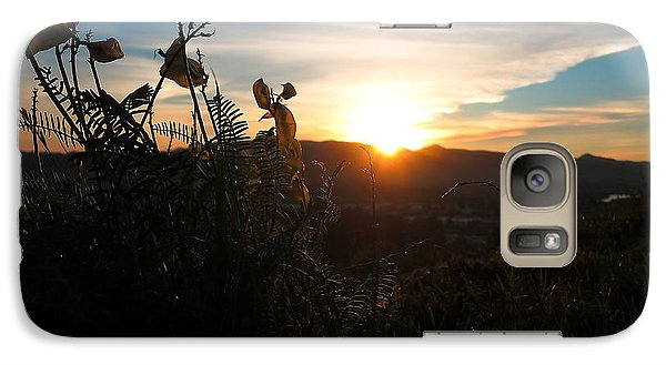 Galaxy Case featuring the photograph Seedpods At Sundown by Paul Foutz