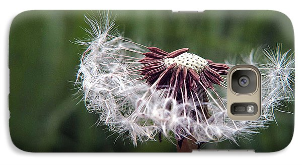 Galaxy Case featuring the photograph Seeds And Stems by Suzy Piatt