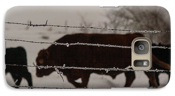 Galaxy Case featuring the photograph Seeking Shelter From The Cold by Shirley Heier