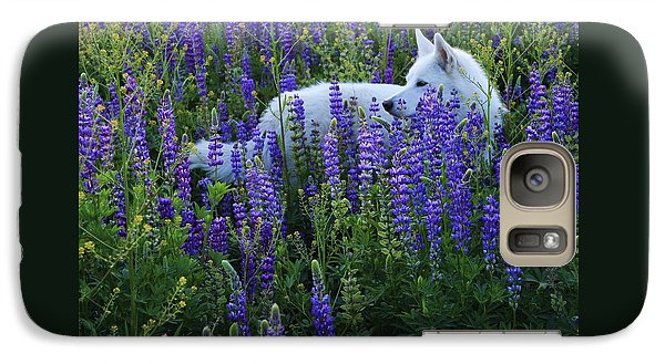 Galaxy Case featuring the photograph Sekani In Lupine by Sean Sarsfield
