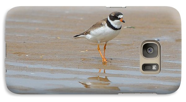 Galaxy Case featuring the photograph Semipalmated Plover by James Petersen