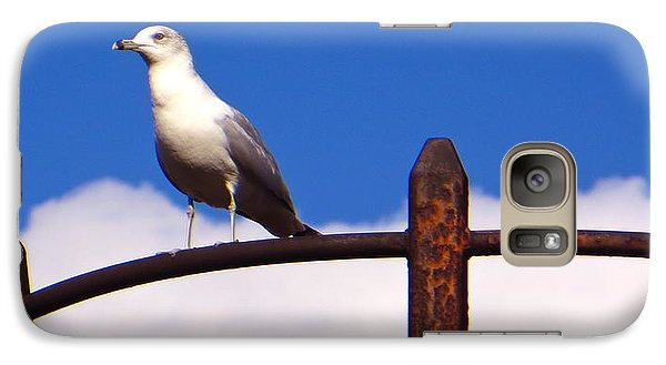 Galaxy Case featuring the photograph Sentinel Sea Gull by Joy Hardee