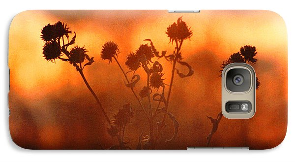 Galaxy Case featuring the photograph September Sonlight by R Thomas Brass