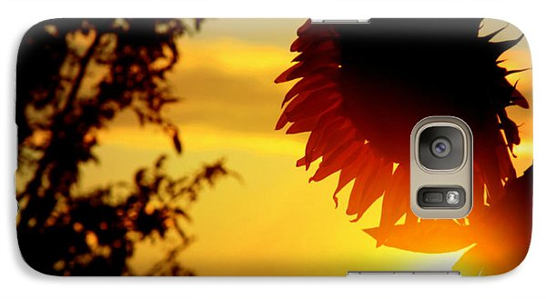 Galaxy Case featuring the photograph Setting Sunflower by Aurelio Zucco