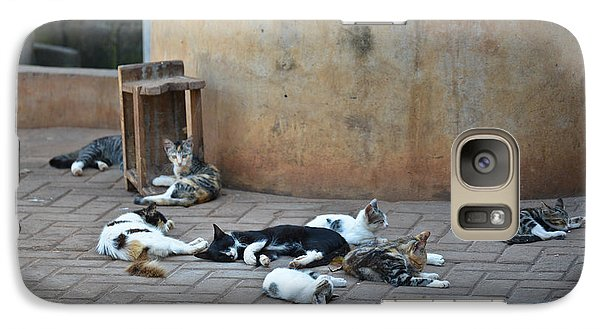 Galaxy Case featuring the photograph Eight Cats In The Drum Maker's Yard by Ronda Broatch