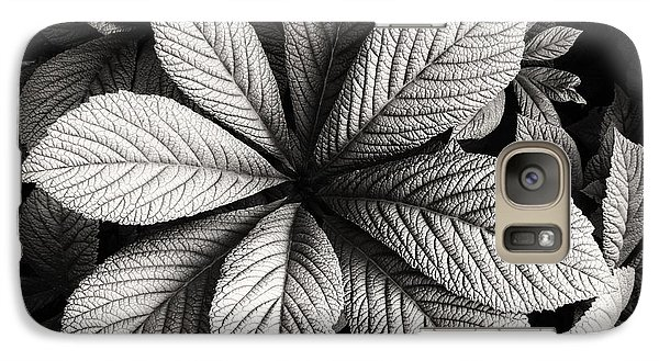 Galaxy Case featuring the photograph Shades Of Gray by Nicola Fiscarelli