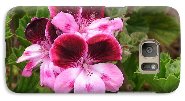Galaxy Case featuring the photograph Shades Of Pink by Lew Davis