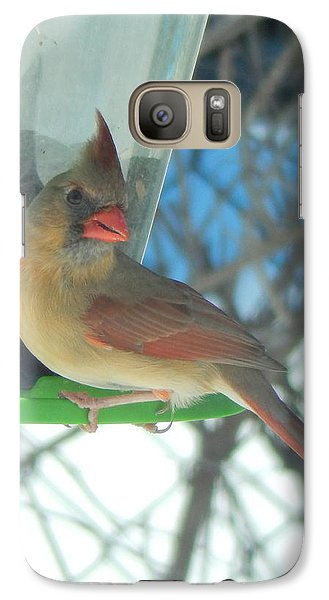 Galaxy Case featuring the photograph Shall I Pose.... by Betty-Anne McDonald